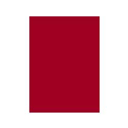 passwords-red_250x250